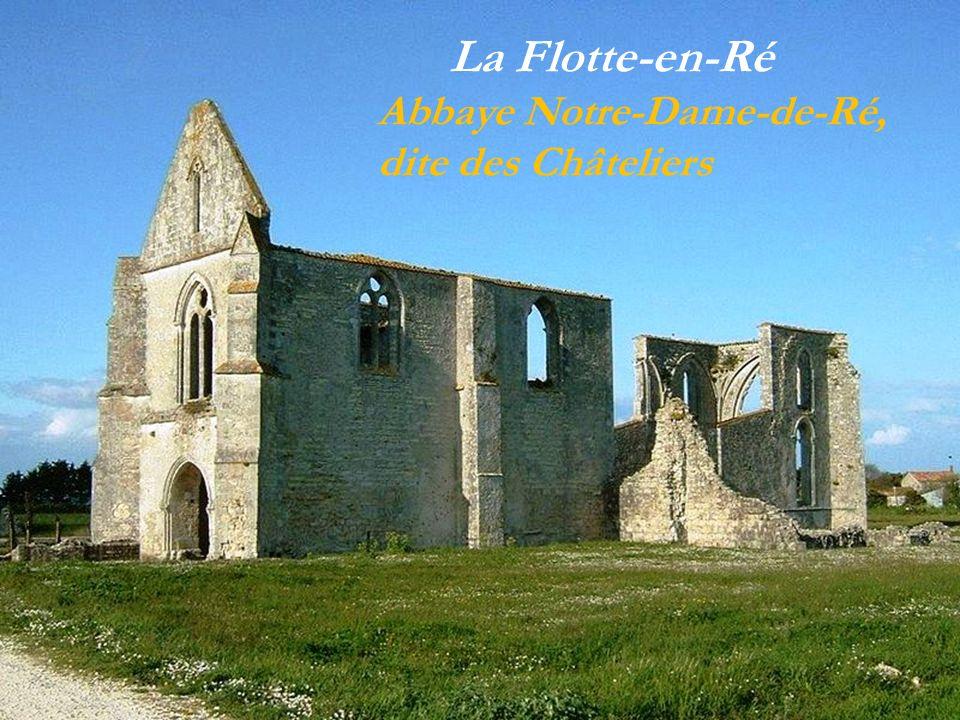 Sainte-Marie-de-Ré La mairie Le village au milieu des vignes