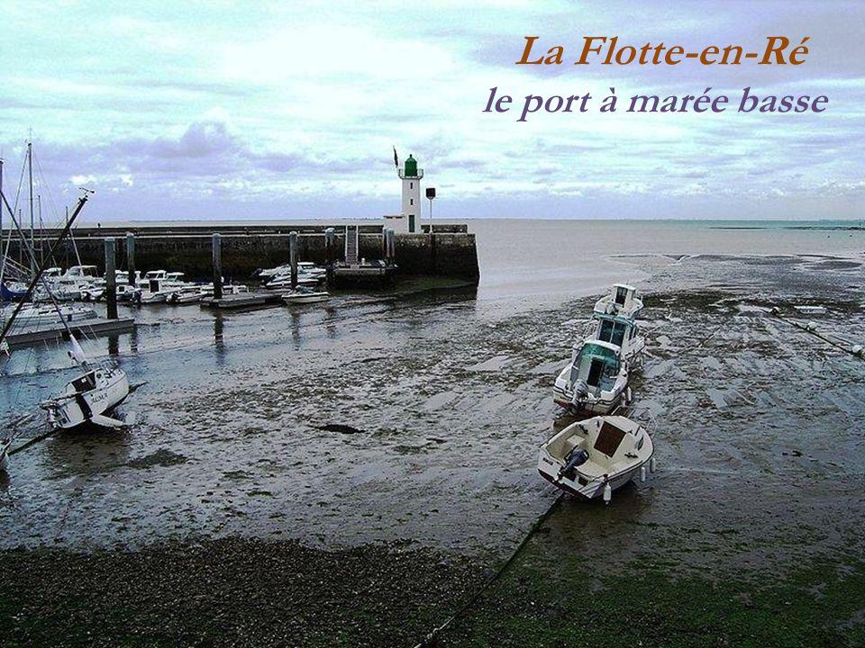 La Flotte-en-Ré le port à marée haute
