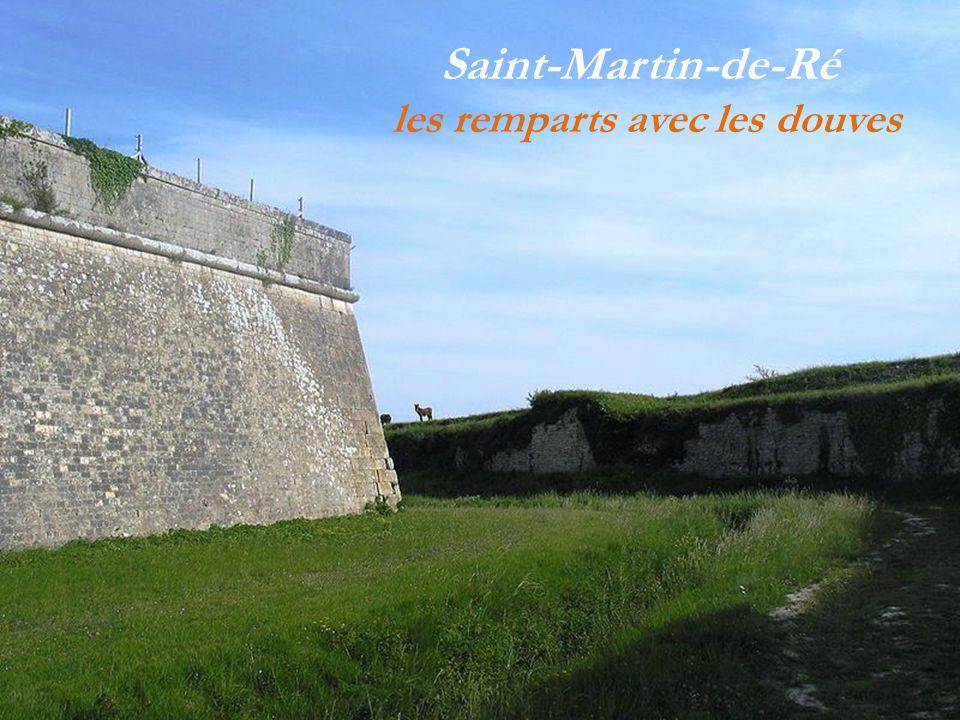 Saint-Martin-de-Ré Rédaction du journal du phare-de-Ré Logo représentant les fortifications de la ville Construction de Vauban porte de la couarde dit