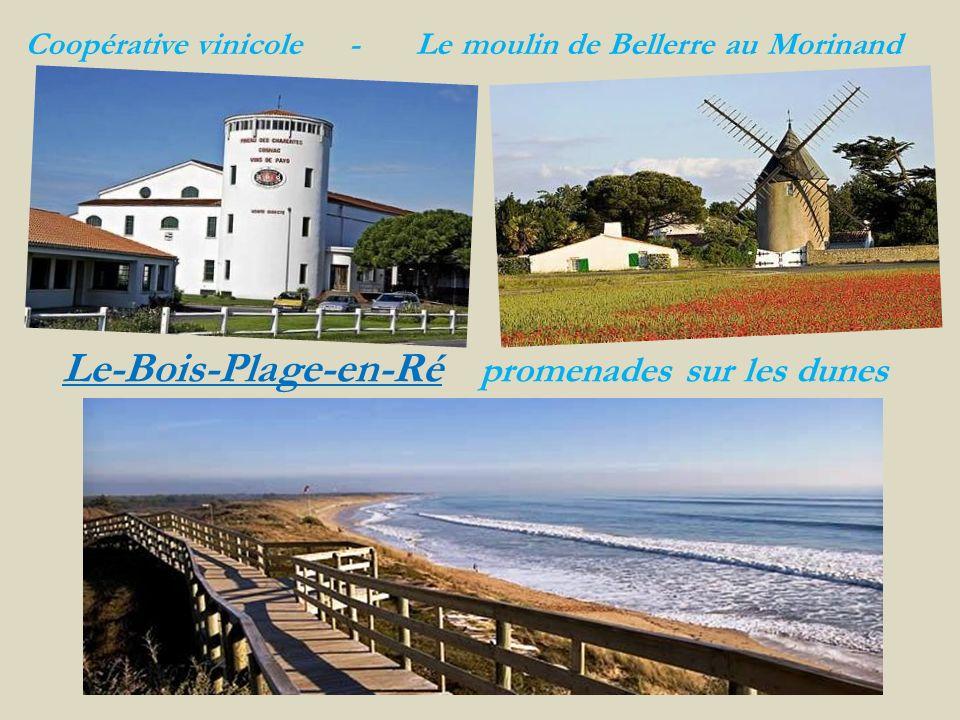 Saint-Martin-de-Ré le port