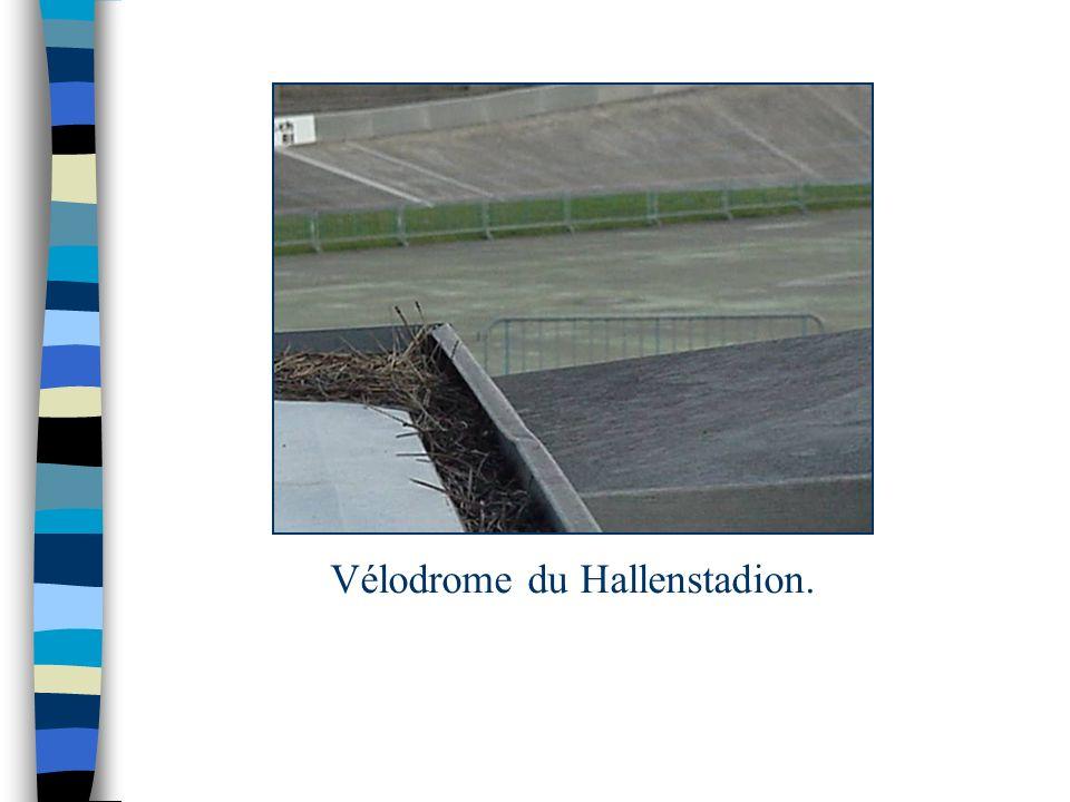 Vélodrome du Hallenstadion.