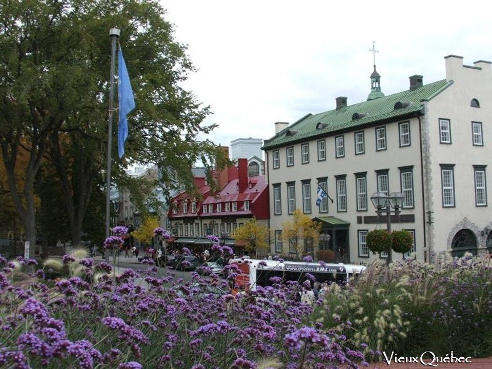 Je me souviens être né sous le Lys et d avoir grandi sous la Rose Québec!!