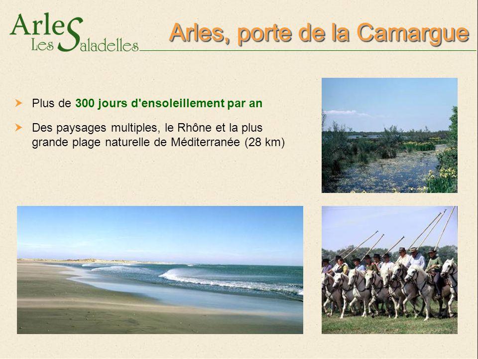 Camargue, paysage unique Entre les deux bras du Rhône L un des plus beaux sites naturels d Europe (100 000 hectares) Une faune et flore d une exceptionnelle richesse, protégées par le Parc Régional de Camargue 3 zones distinctes : les cultures, les marais salants et les lagunes