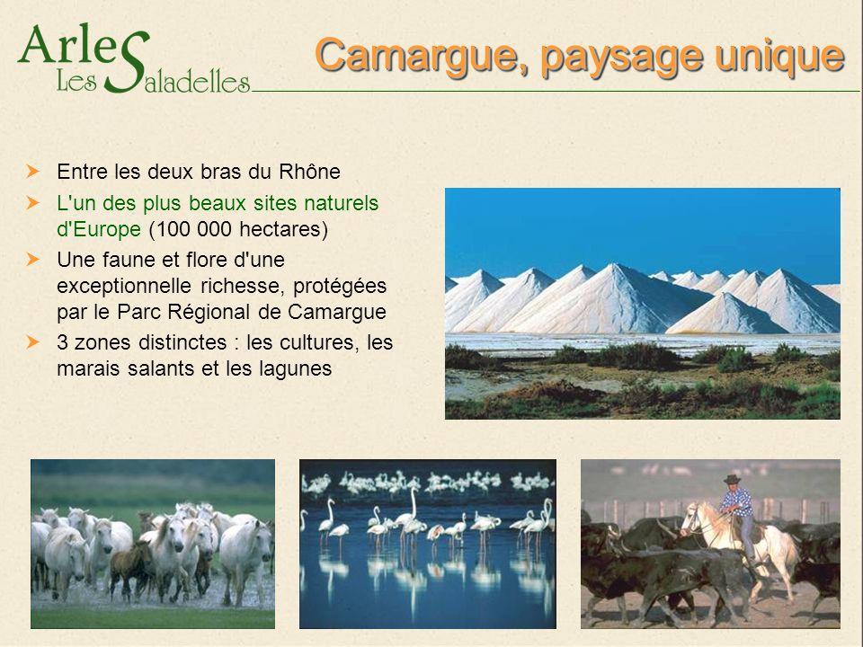 CopyrightCopyright Crédits photos : Pierre & Vacances, J et G.