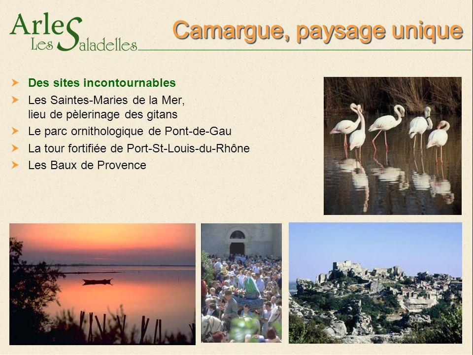 Domaine Arles-Camargue Dans les Bouches du Rhône A 4 km du centre ville d Arles Aux portes de la Camargue A 35 km des plages des Saintes-Maries-de-la-Mer