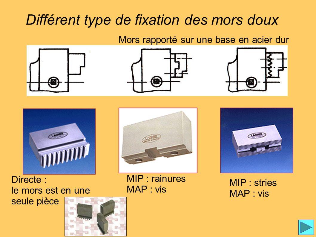 Fixation mors Différent type de fixation des mors doux Directe : le mors est en une seule pièce Mors rapporté sur une base en acier dur MIP : rainures