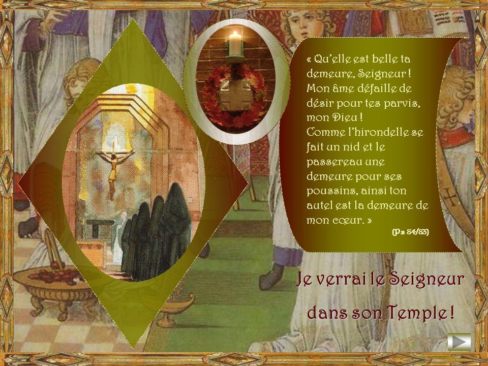 Une raison de plus pour laquelle la fête de la Dédicace célébrée à Solesmes est un jour de fête, vient de ce que ce jour est aussi lanniversaire de na