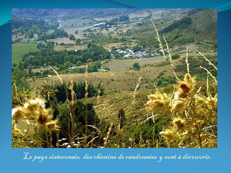 Le pays sisteronais, des chemins de randonnées y sont à découvrir.