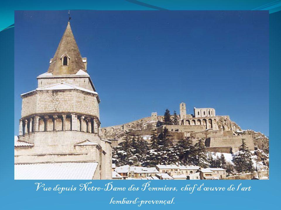 Vue depuis Notre-Dame des Pommiers, chef d'œuvre de l'art lombard-provençal.