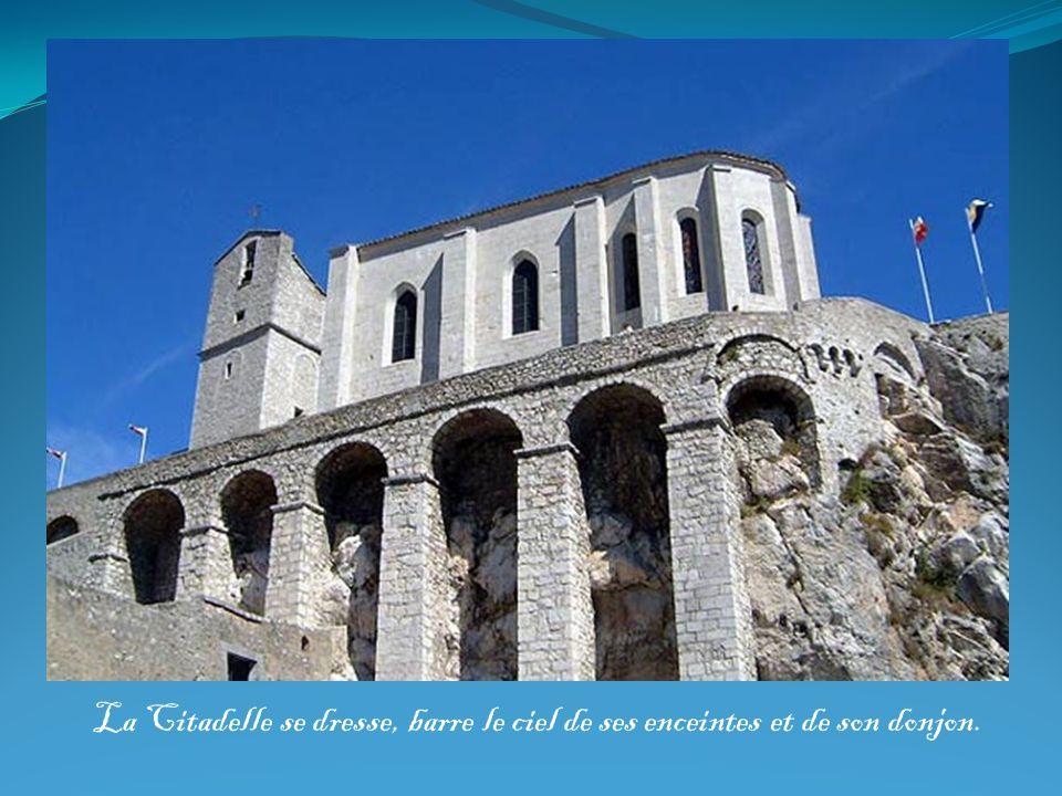 La Citadelle se dresse, barre le ciel de ses enceintes et de son donjon.