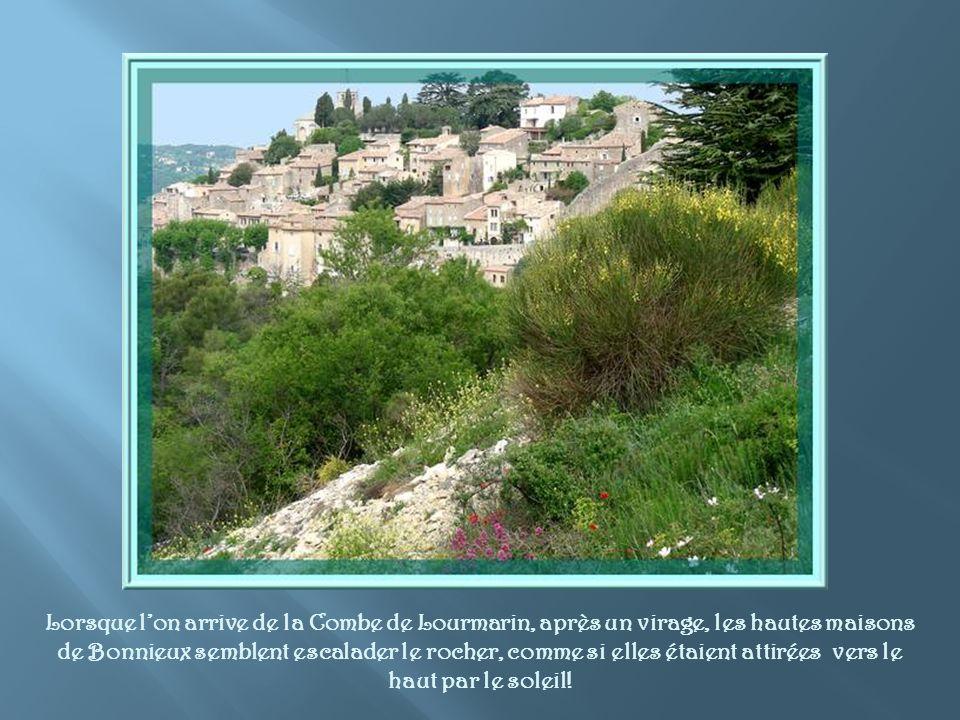Bonnieux fut un oppidum habité dès l´époque néolithique et à l´âge du bronze.
