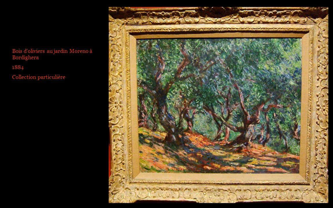 Bois doliviers au jardin Moreno à Bordighera 1884 Collection particulière