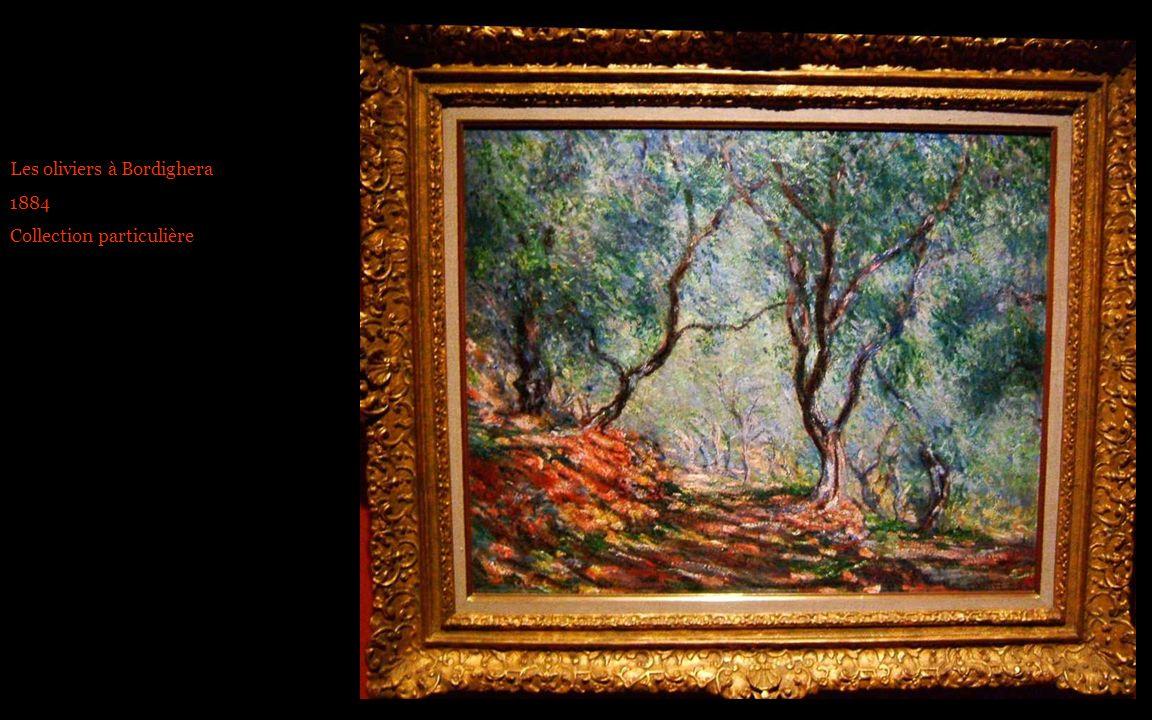 Les oliviers à Bordighera 1884 Collection particulière