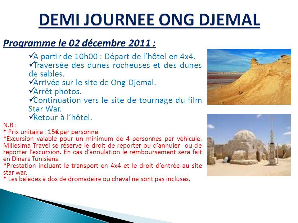 Programme le 02 décembre 2011 : A partir de 10h00 : Départ de lhôtel en 4x4. Traversée des dunes rocheuses et des dunes de sables. Arrivée sur le site