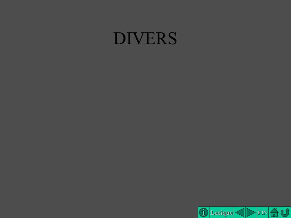 Lexique FIN DIVERS
