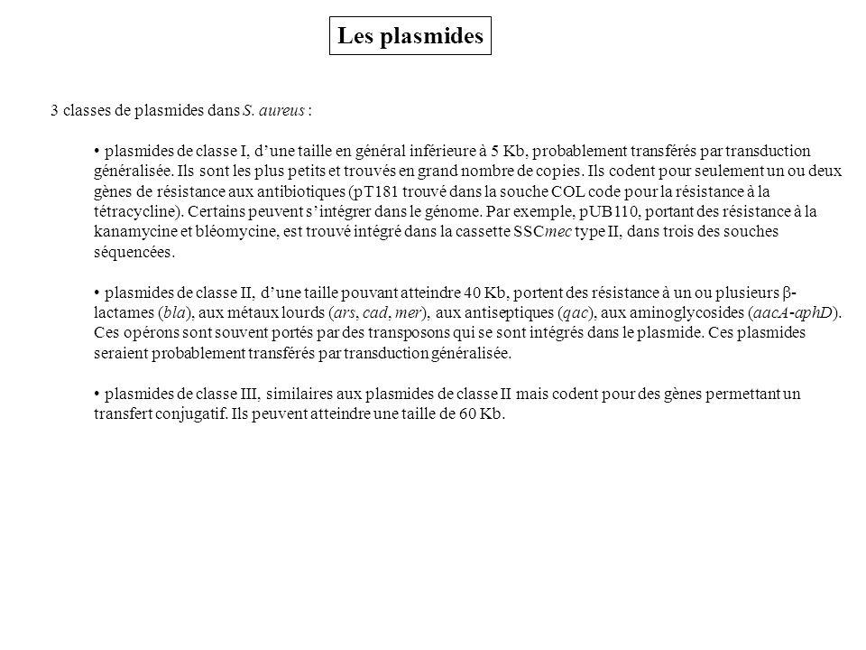Les plasmides 3 classes de plasmides dans S.