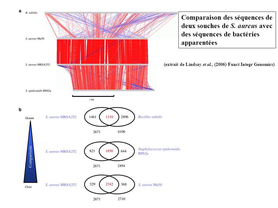 Comparaison des séquences de deux souches de S.