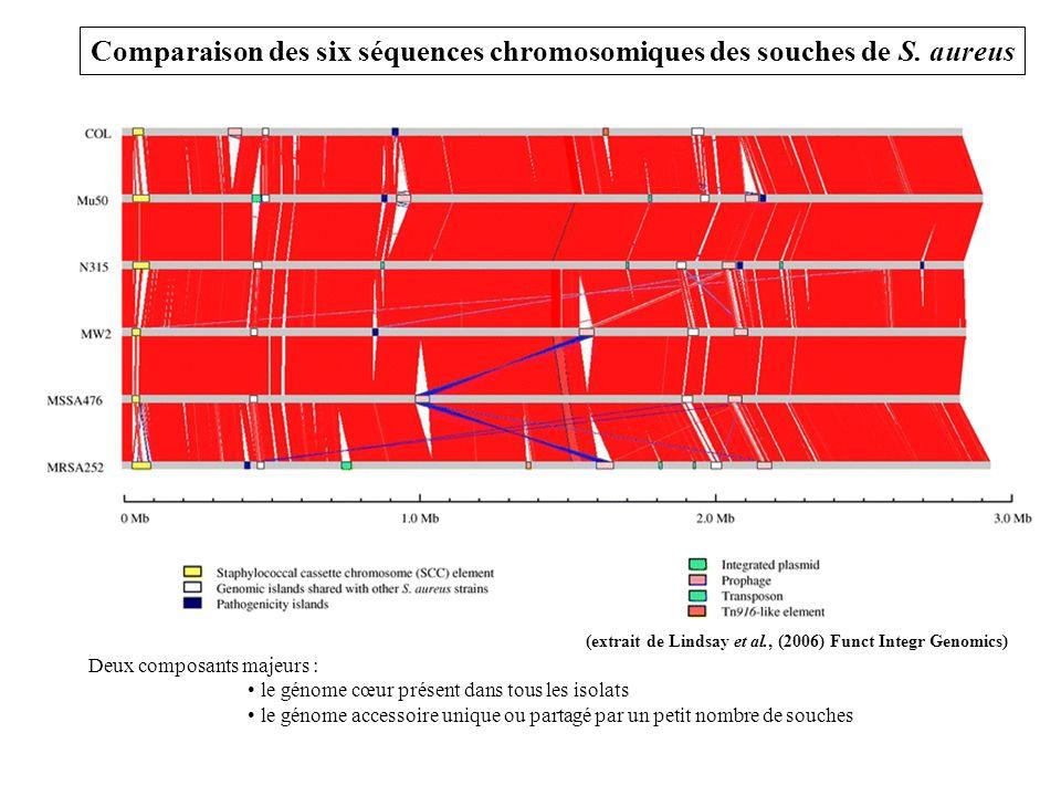 Comparaison des six séquences chromosomiques des souches de S.