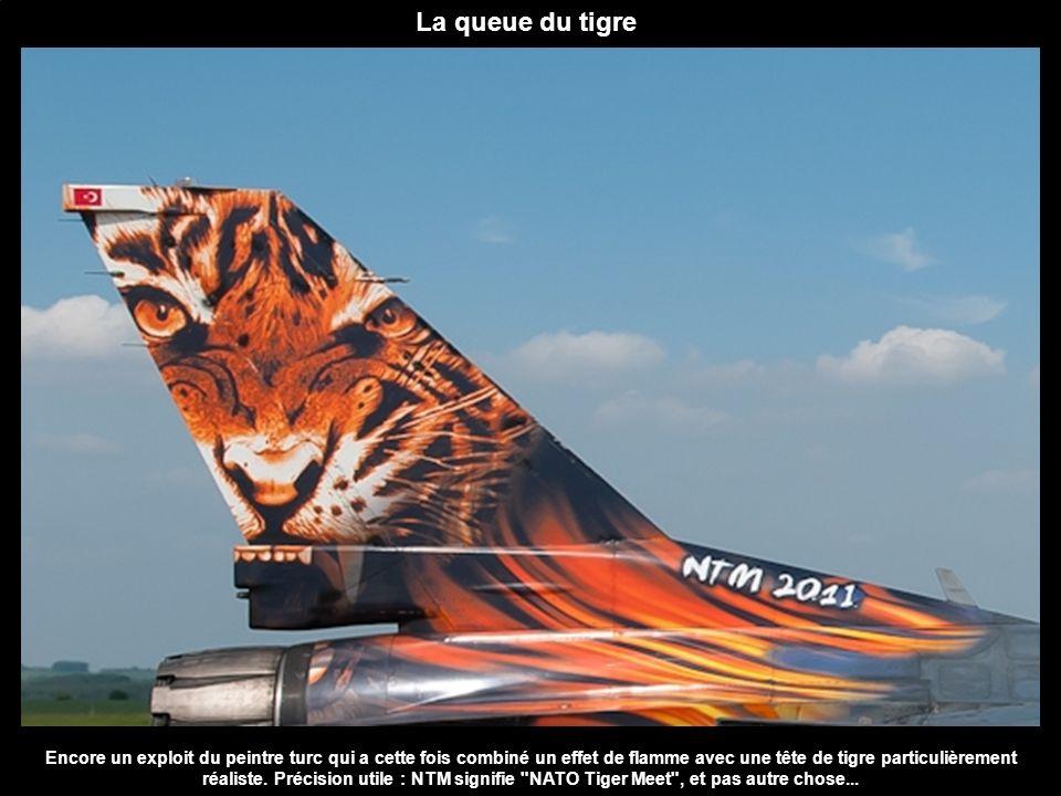 La queue du tigre Encore un exploit du peintre turc qui a cette fois combiné un effet de flamme avec une tête de tigre particulièrement réaliste. Préc