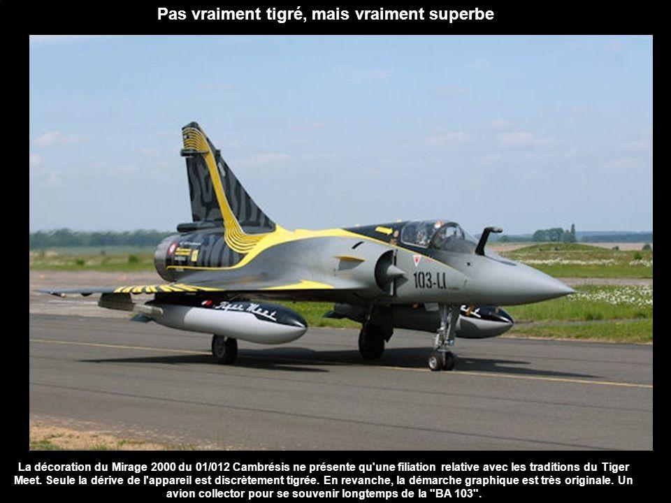Pas vraiment tigré, mais vraiment superbe La décoration du Mirage 2000 du 01/012 Cambrésis ne présente qu'une filiation relative avec les traditions d
