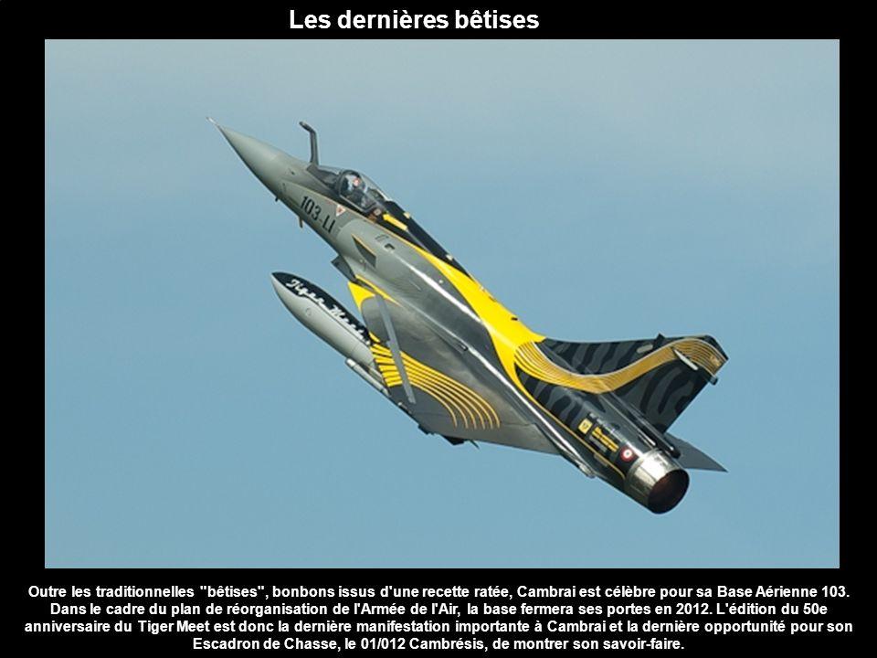 Le bon élève des Tchèques Petit, discret et peu onéreux, mais fiable, maniable et efficace, le Gripen apparait comme un bon élève dans la compétition à trois que se livrent les européens BAE (Typhoon), Dassault (Rafale) et Saab.