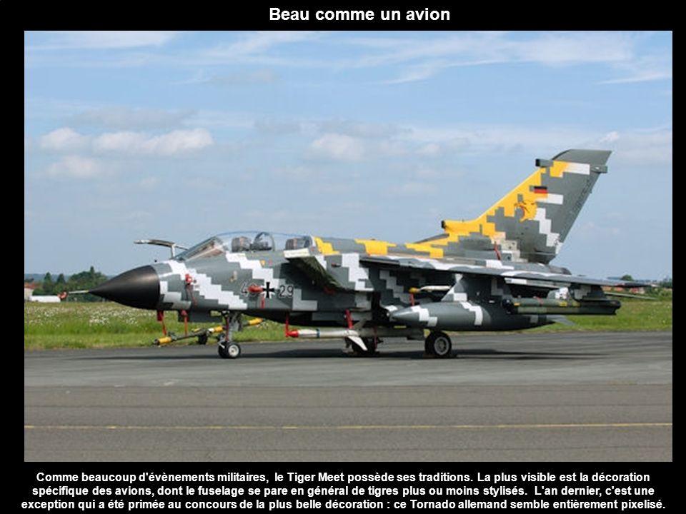 Naturel, sans maquillage Alors que les avions vedettes du Tiger Meet font le show et portent tous un habit de lumière plus ou moins tigré, les escadrons utilisent également des avions non décorés (ici un F-16 portugais).