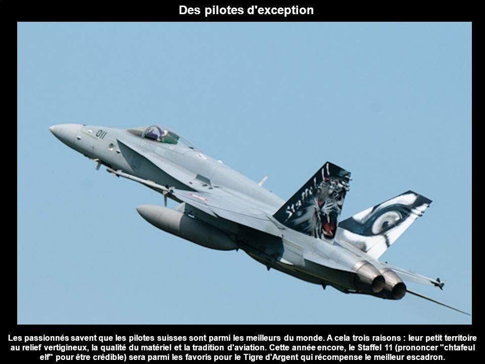 Du sud au nord Cette année les Portugais de l escadron 301 sont venus en force avec pas moins de cinq F-16.