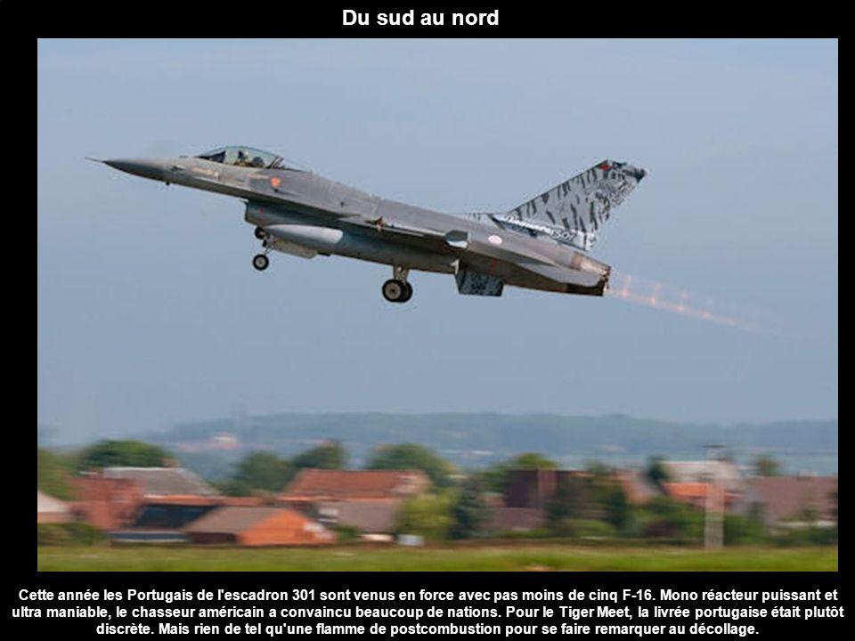 Du sud au nord Cette année les Portugais de l'escadron 301 sont venus en force avec pas moins de cinq F-16. Mono réacteur puissant et ultra maniable,