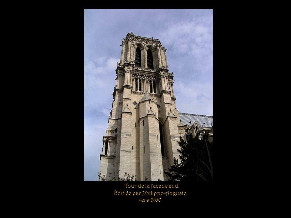 Vue de la flèche et des toits de Notre-Dame