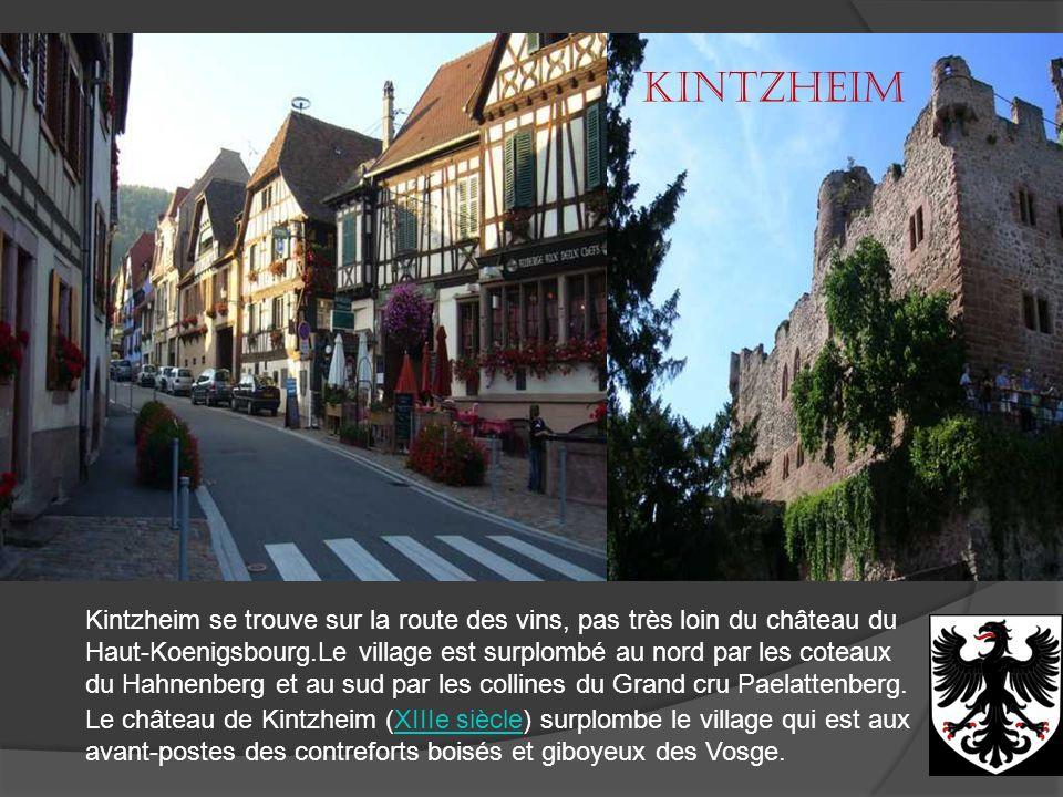 Châtenois La commune CHATENOIS fait partie du département du BAS RHIN. Elle s'étend sur 1757 hectares a une altitude de 325 mètres. Les habitants de l