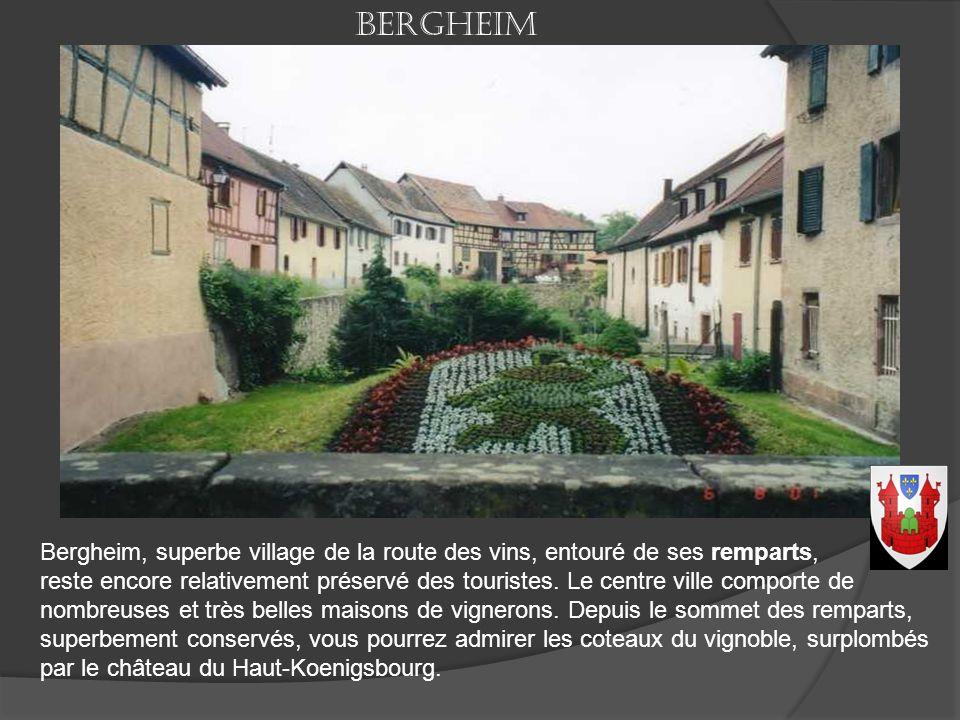 Saint-Hippolyte (Sankt Pilt en allemand) est une commune française, située dans le département du Haut-Rhin. C'est un illustre abbé de Saint-Denis, Fu