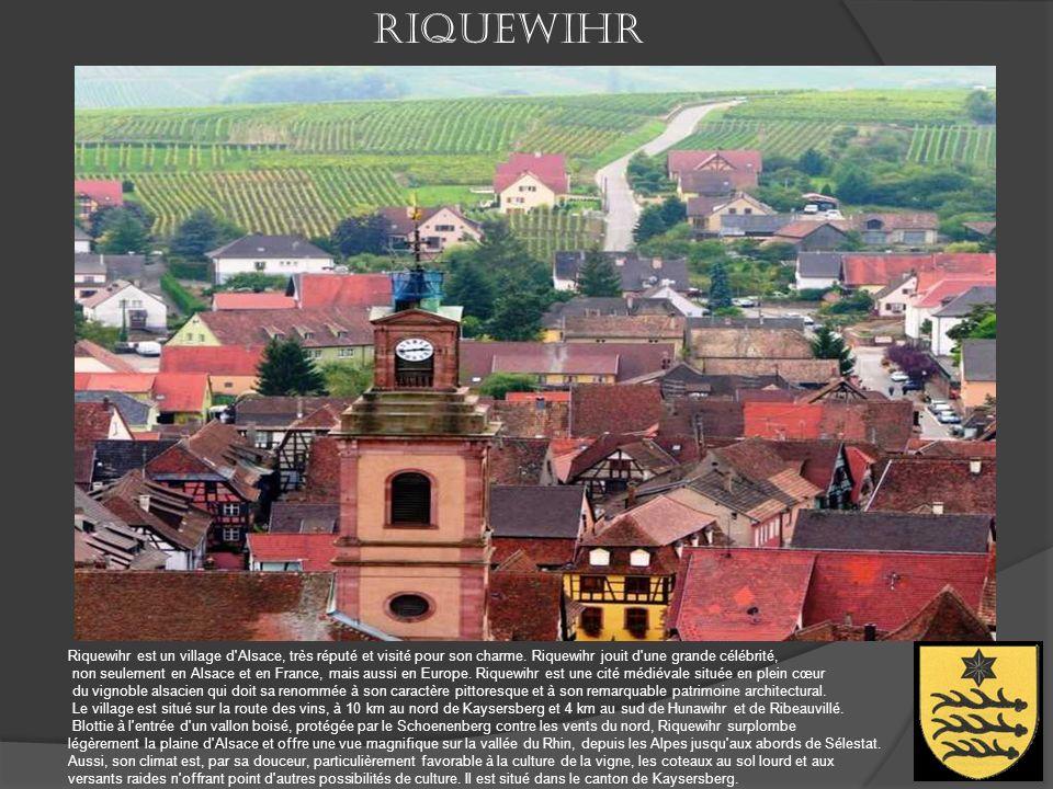 Ribeauvillé Blottie au pied du massif du Taennchel au cœur du vignoble alsacien entre Strasbourg et Mulhouse, Ribeauvillé est une cité viticole au cha