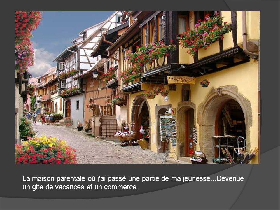 Eguisheim, berceau du vignoble alsacien