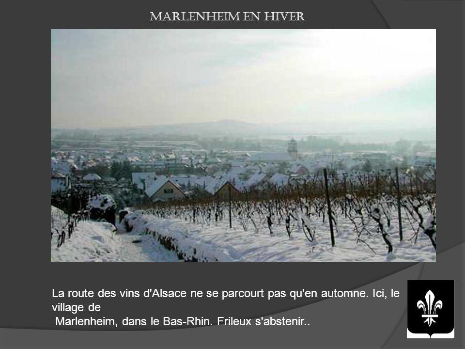 Les plus beaux sites de la route des vins d'Alsace Entre villages typiques et paysages de vignobles, parcourir la route des vins d'Alsace, c'est l'une