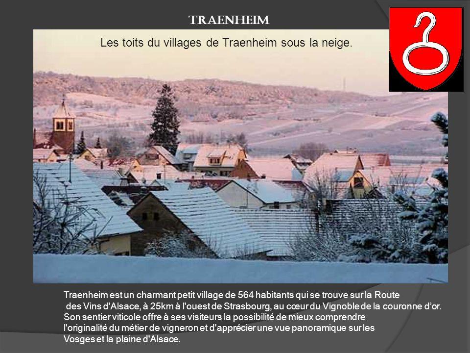 La route des vins d'Alsace ne se parcourt pas qu'en automne. Ici, le village de Marlenheim, dans le Bas-Rhin. Frileux s'abstenir.. Marlenheim en hiver