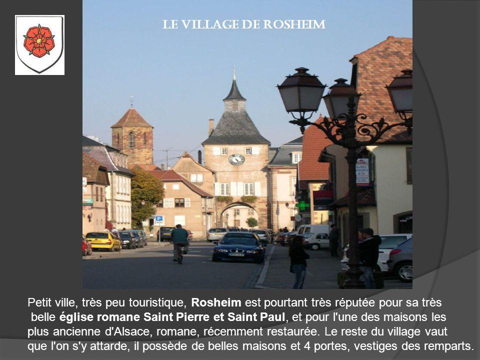 Molsheim Petite ville à proximité de Strasbourg, Molsheim est une ville agréable à visiter, loin du flot des touristes. Elle peut être un excellent po