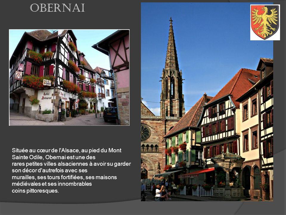 Petit ville, très peu touristique, Rosheim est pourtant très réputée pour sa très belle église romane Saint Pierre et Saint Paul, et pour l'une des ma