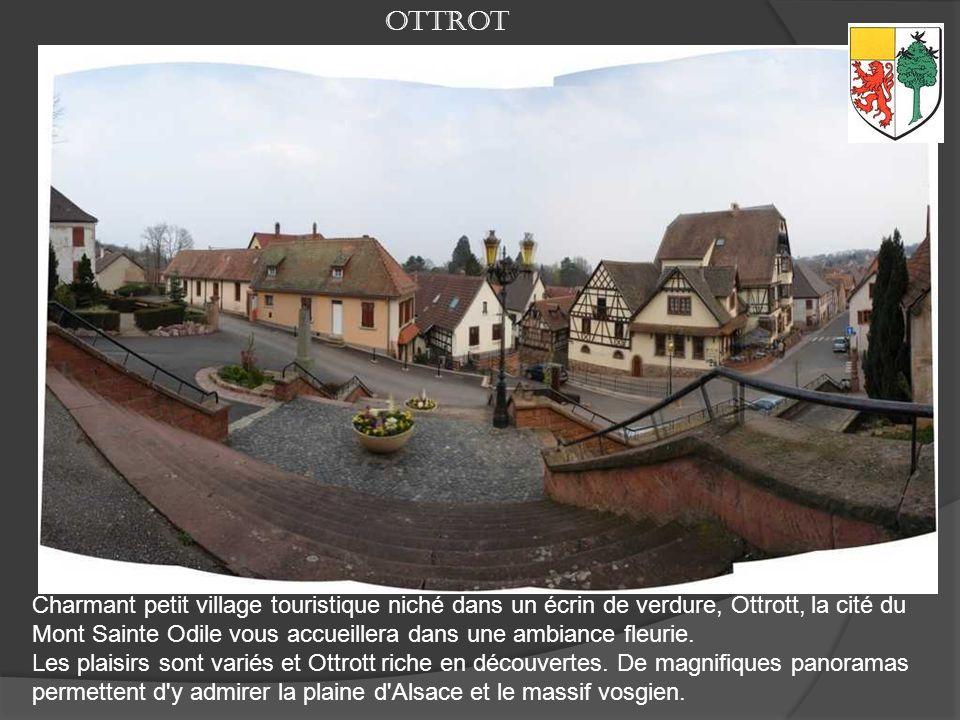 Située au cœur de l'Alsace, au pied du Mont Sainte Odile, Obernai est une des rares petites villes alsaciennes à avoir su garder son décor d'autrefois