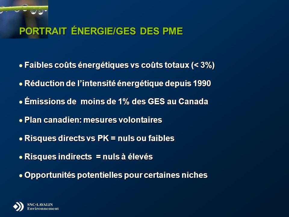 PORTRAIT ÉNERGIE/GES DES PME Faibles coûts énergétiques vs coûts totaux (< 3%) Faibles coûts énergétiques vs coûts totaux (< 3%) Réduction de lintensité énergétique depuis 1990 Réduction de lintensité énergétique depuis 1990 Émissions de moins de 1% des GES au Canada Émissions de moins de 1% des GES au Canada Plan canadien: mesures volontaires Plan canadien: mesures volontaires Risques directs vs PK = nuls ou faibles Risques directs vs PK = nuls ou faibles Risques indirects = nuls à élevés Risques indirects = nuls à élevés Opportunités potentielles pour certaines niches Opportunités potentielles pour certaines niches