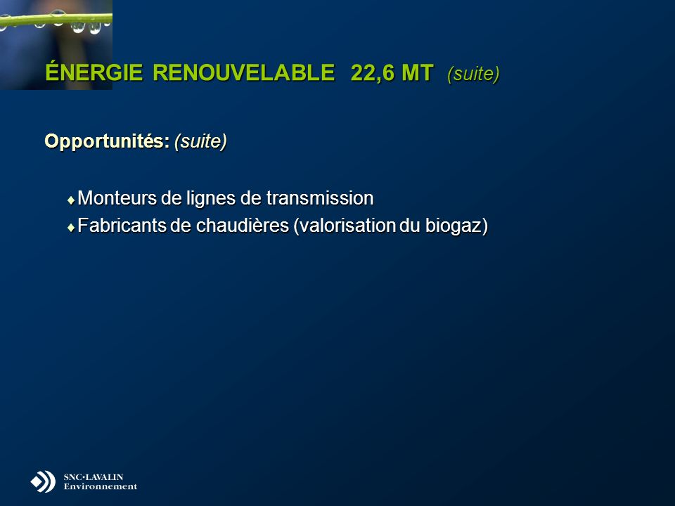 ÉNERGIE RENOUVELABLE 22,6 MT (suite) Opportunités: (suite) Monteurs de lignes de transmission Monteurs de lignes de transmission Fabricants de chaudières (valorisation du biogaz) Fabricants de chaudières (valorisation du biogaz)