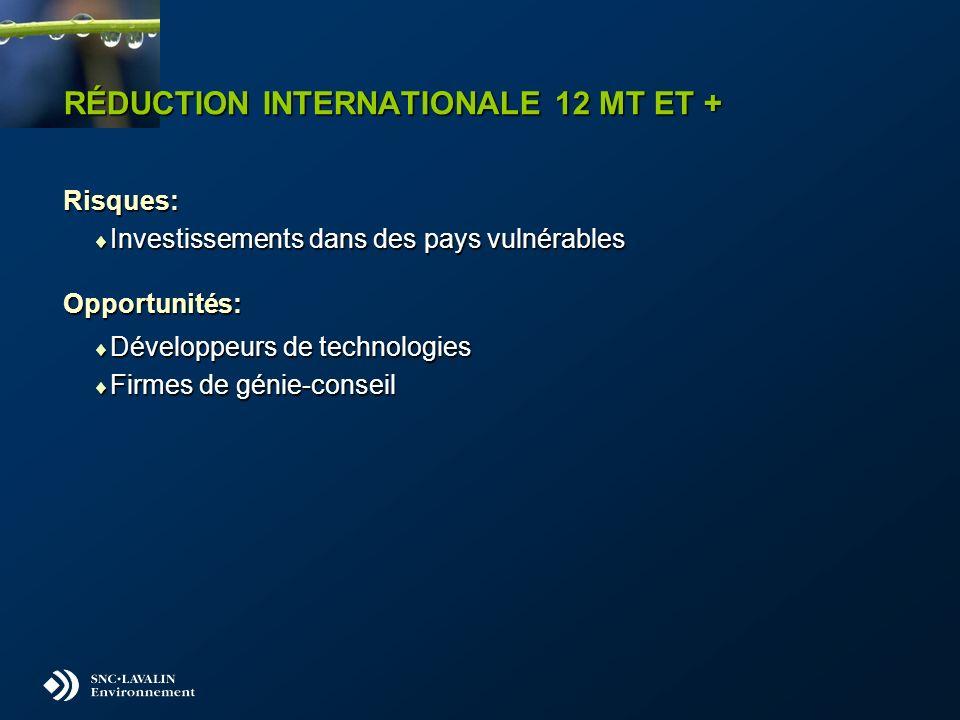 RÉDUCTION INTERNATIONALE 12 MT ET + Risques: Investissements dans des pays vulnérables Investissements dans des pays vulnérablesOpportunités: Développ