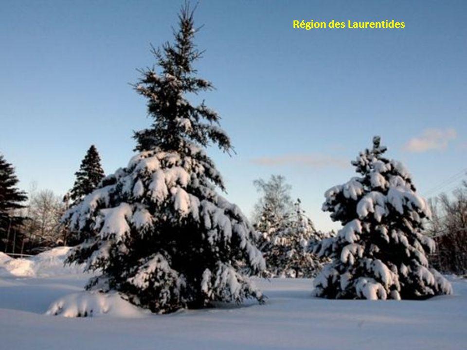 Région des Laurentides