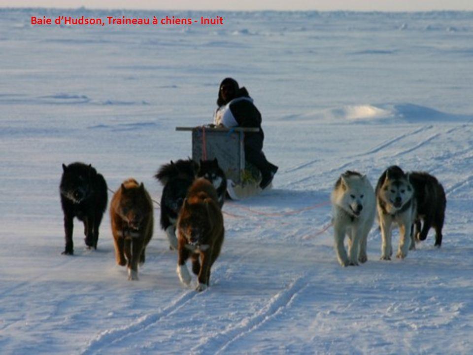 Village Inuit de Inukjuak – Nord du Québec
