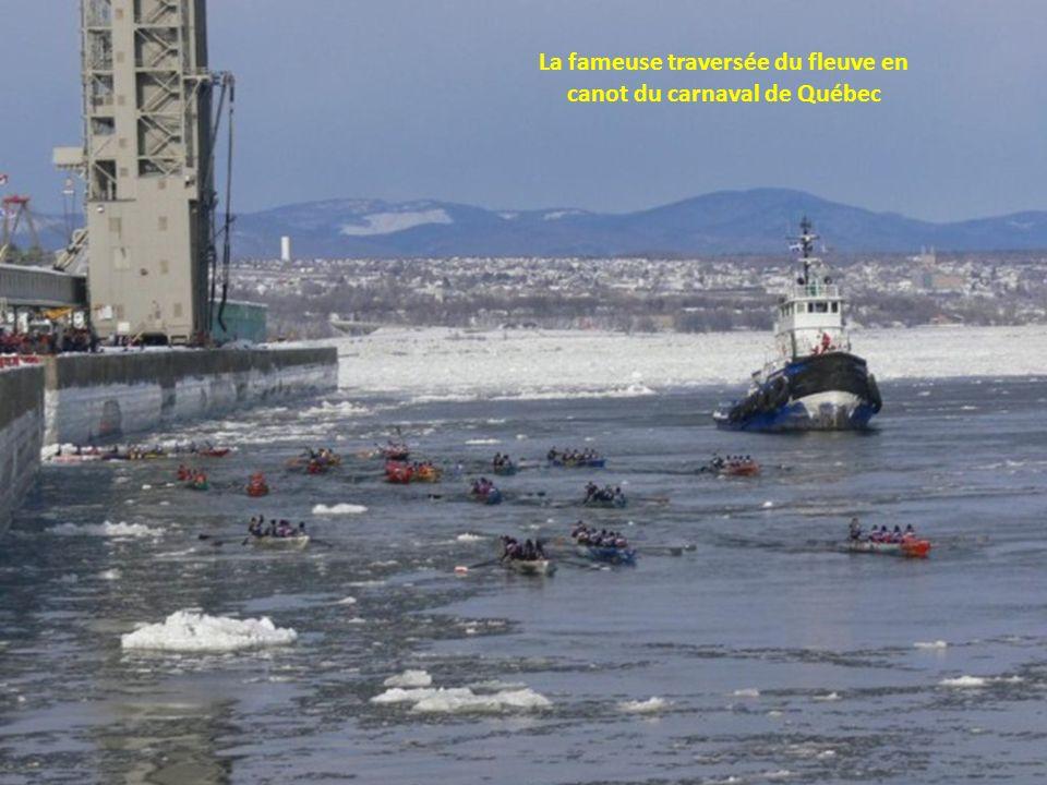 Baie dHudson, Traineau à chiens - Inuit