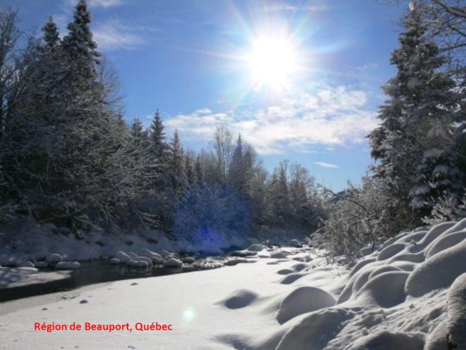 Enlèvement de la neige à Montréal