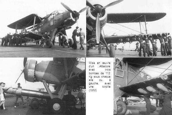 Mise en œuvre dun Albacore avec trois bombes de 113 Kg sous chaque aile ou, à gauche, avec une torpille (IWM)