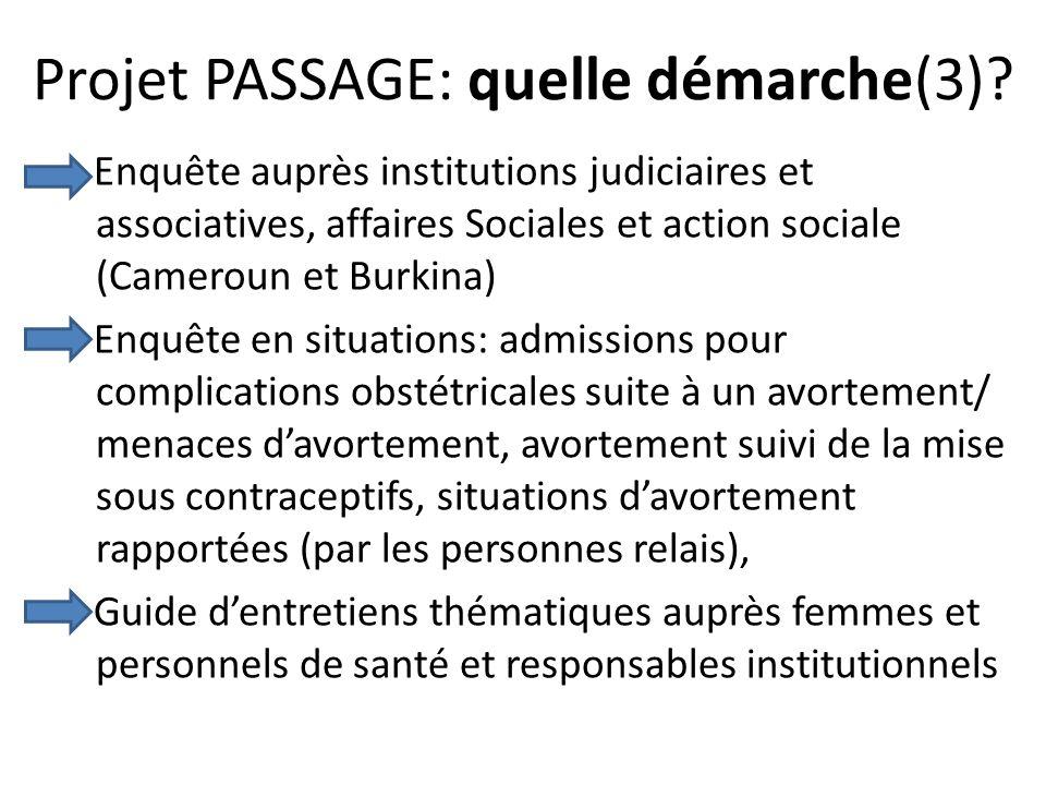 Projet PASSAGE: quelle démarche(3)? Enquête auprès institutions judiciaires et associatives, affaires Sociales et action sociale (Cameroun et Burkina)