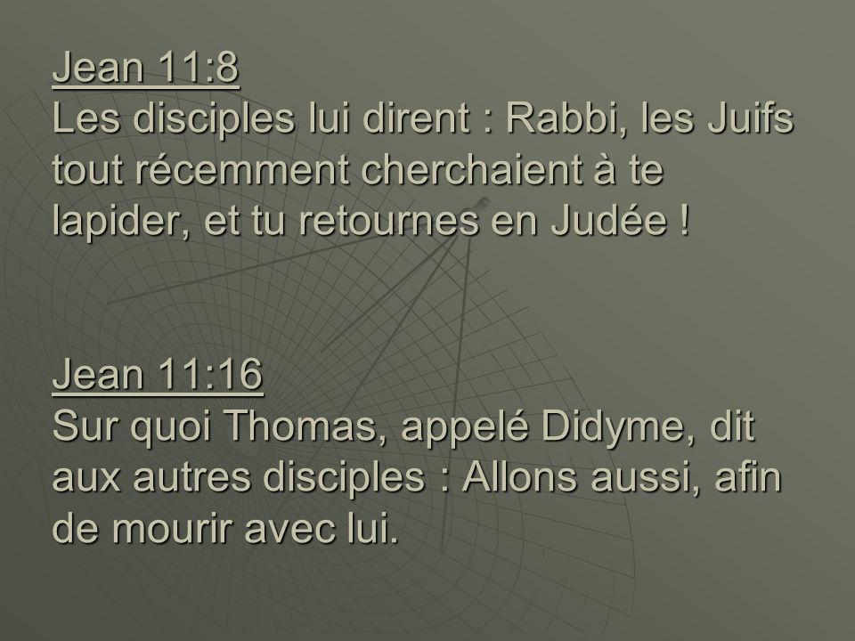 Jean 11:8 Les disciples lui dirent : Rabbi, les Juifs tout récemment cherchaient à te lapider, et tu retournes en Judée ! Jean 11:16 Sur quoi Thomas,