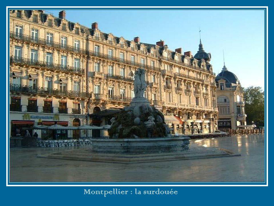 Mont de Marsan : la ville aux trois rivières