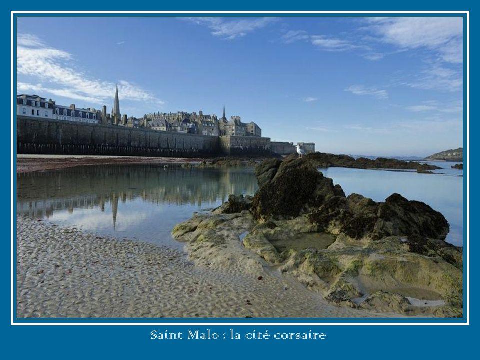 Noirmoutier : lîle aux mimosas